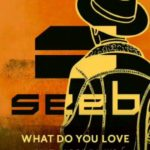 seeb-feat-jacob-banks-what-do-you-love
