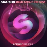 sam-feldt-what-about-the-love